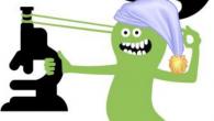 Les Petits Débrouillards IDF ont ouvert les Sciences en pyjama, […]